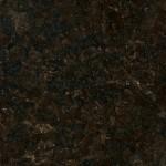 Indian Black Pearl granite
